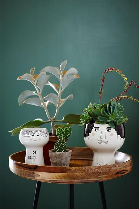 Meyer_Lavigne_flower_pots