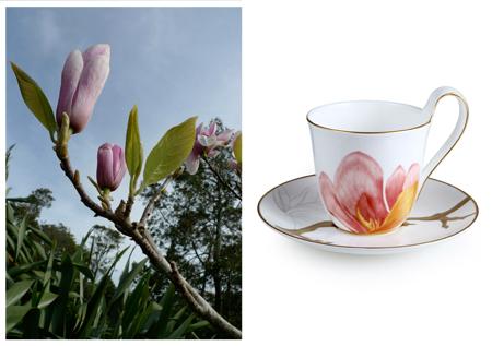 RC Flora Magnolia