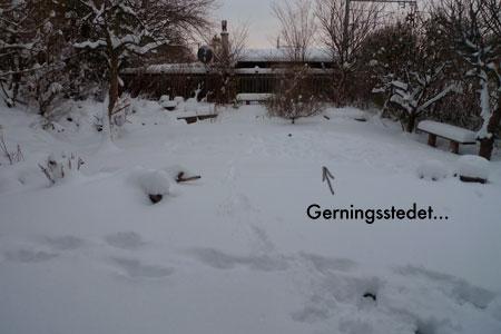Rul_dig_i_sneen